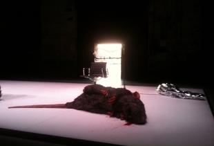 The last scene by Alex Rigola's El Policia de las Ratas