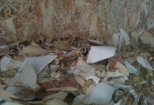 Wallpaper scrap at Ventura