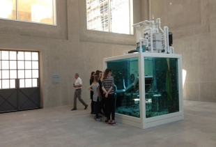 Damien Hirst at Trittico, courtesy picture pr/undercover