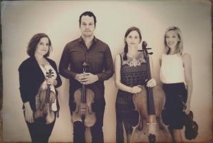 Mivos Quartet (USA)