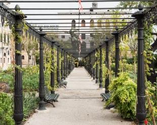 The newly restored wisteria pergola, ph. M. Lombezzi