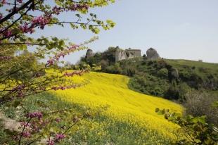 Fossombrone (Rocca), Marche