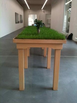 Carlos Garacoia, Jardin (de la serie Ciudad viste desde la mesa di casa), installation grass mini dv table