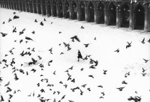 Gianni Berengo Gardin, Venezia 1960, Courtesy l'autore per gentile concessione per diritto di cronaca dalla Casa dei Tre Oci